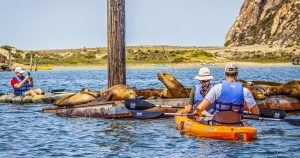 Amid COVID-19, we visited Morro Bay with Airbnb precautions